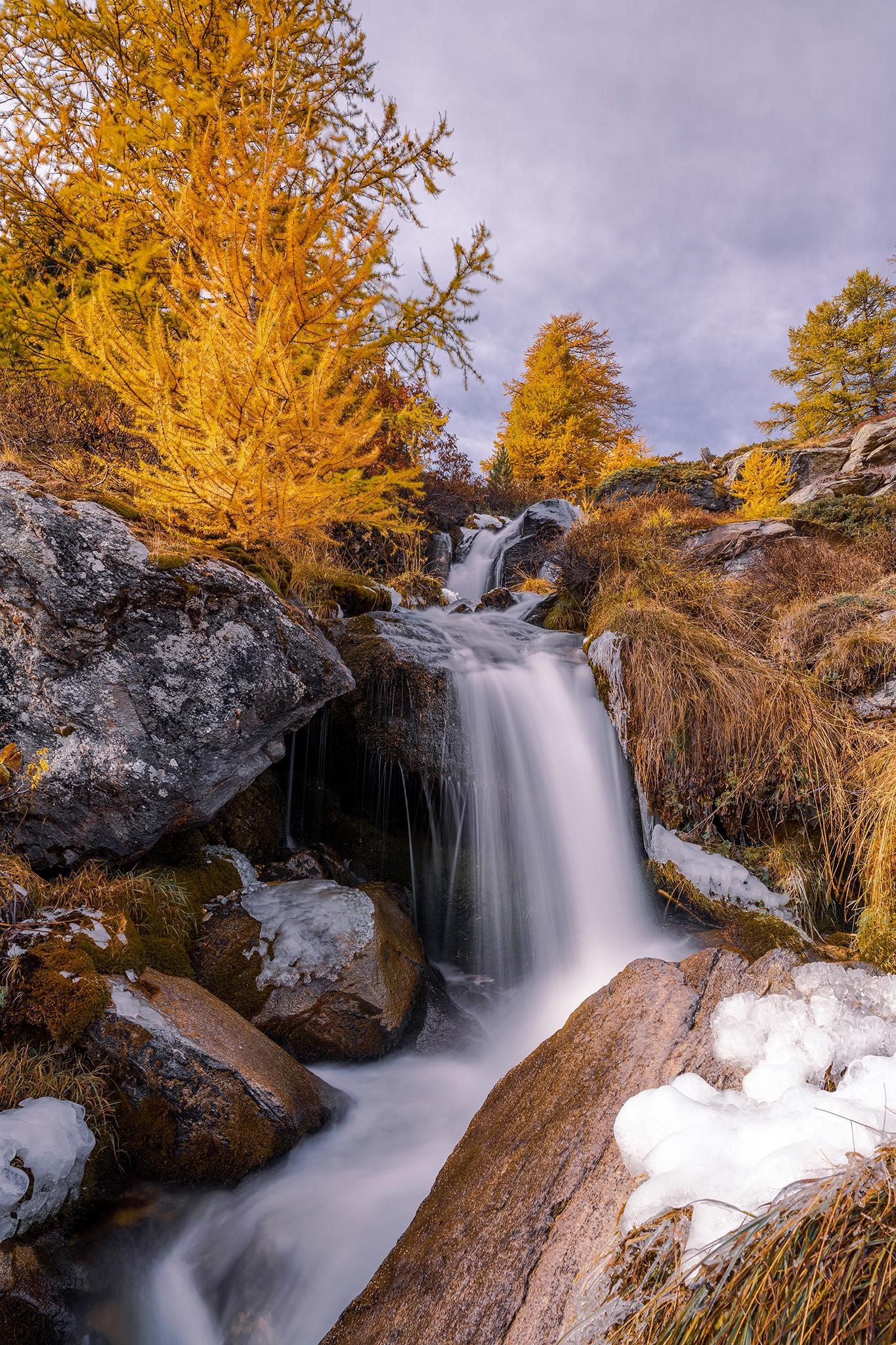 Petite cascade au travers des Mélèzes dans la vallée de la Clarée | Hautes-Alpes © Pierre ROLIN - Photographe Nancy - Lorraine / Grand Est